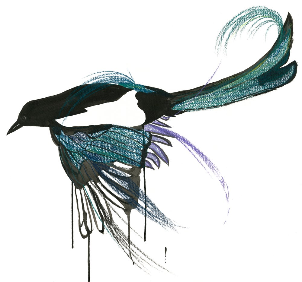 Image of One for Sorrow