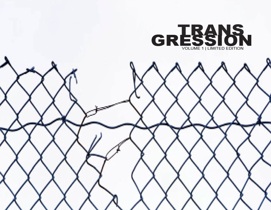 Image of Transgression: Vol 1