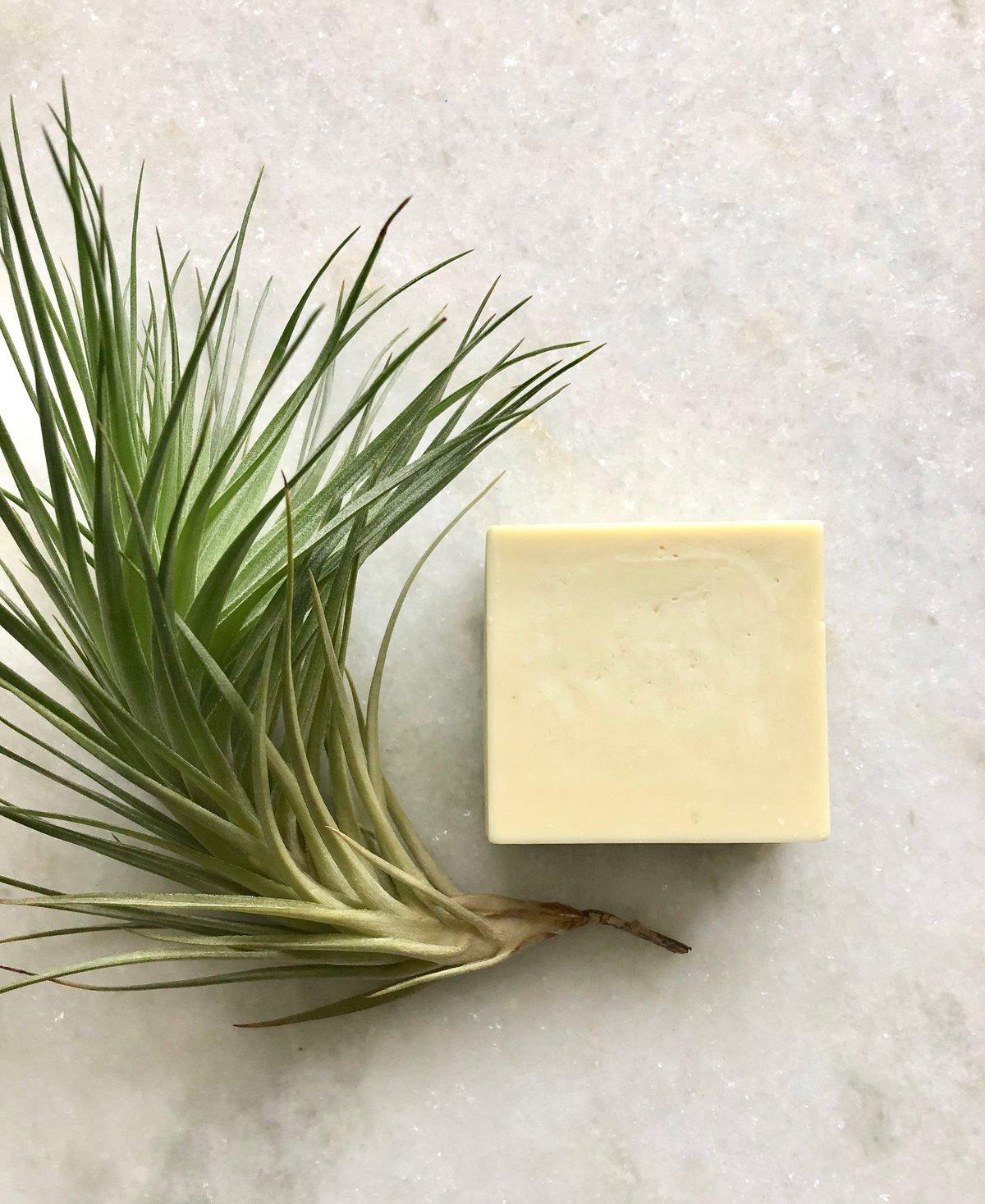 Image of Castile Soap