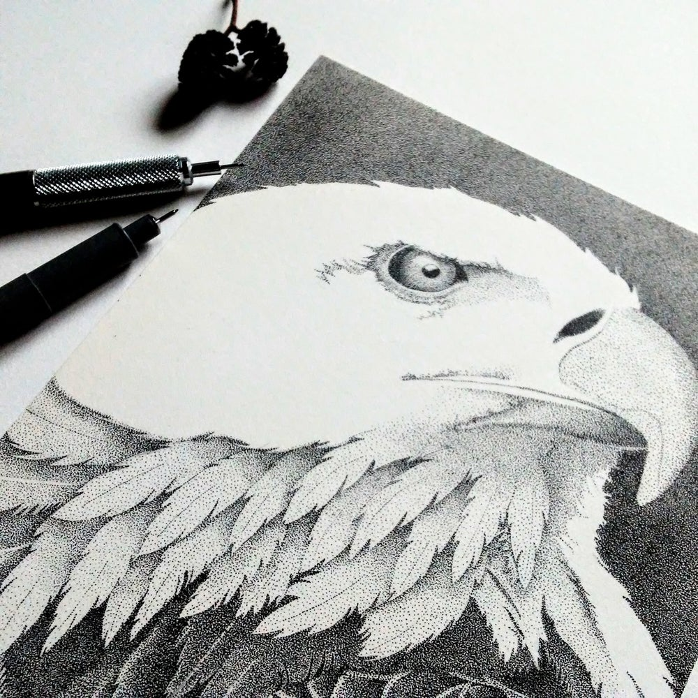 Image of Eagle