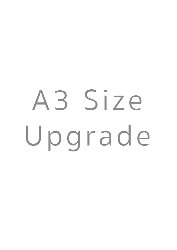 Image of A3 Size Upgrade