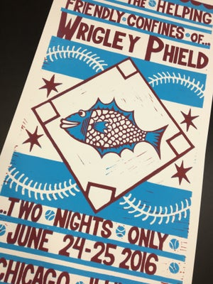 Image of Wrigley Phield 2016