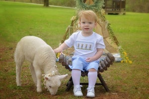 Image of 2020 Lamb Mini Session~March 15th