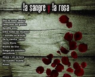 Image of La Sangre y La Rosa – DVD (Español)