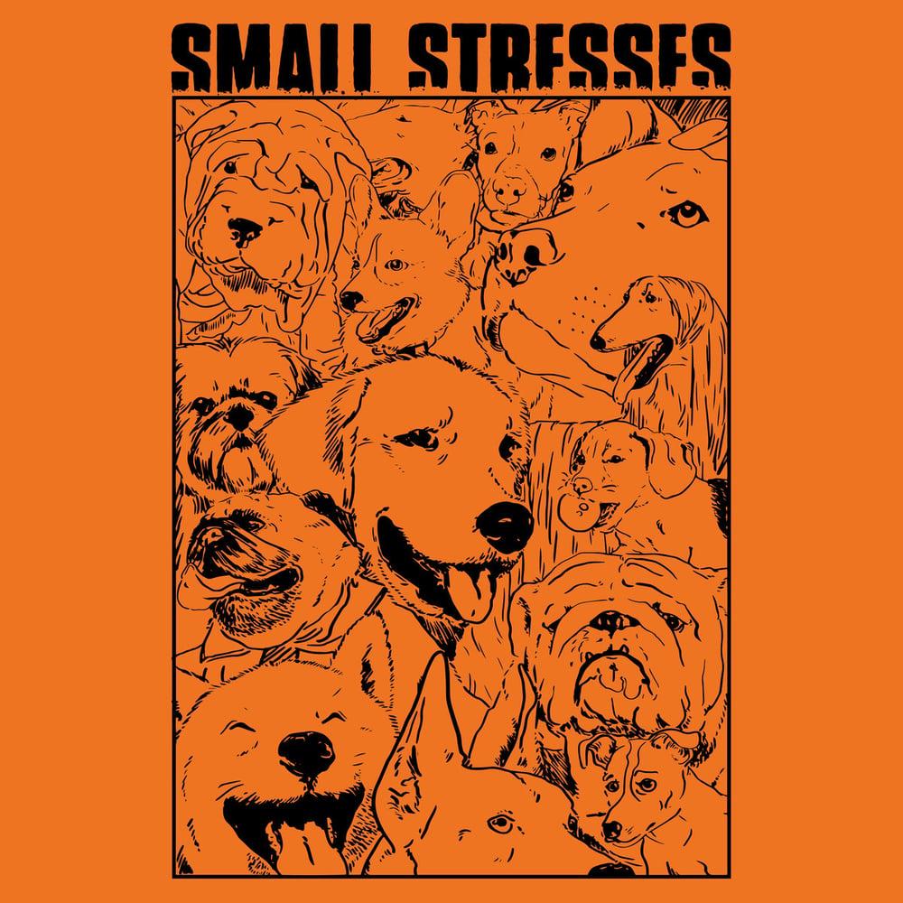 Image of Small Stresses - Swim EP CS