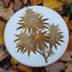 Image of Cannabis Embroidery/12 inch round hoop