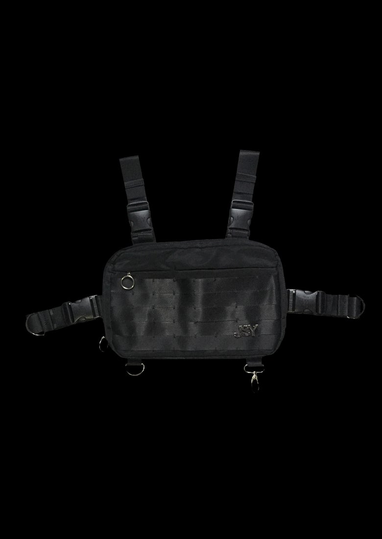 Image of CHEST RIG