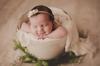Bump to Baby: Maternity & Newborn Session Bundle