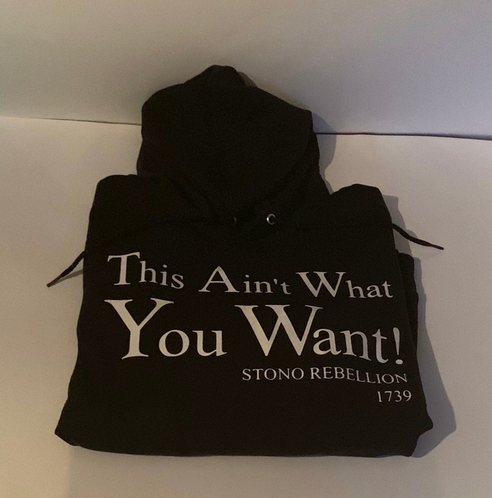 Image of THIS AIN'T WHAT YOU WANT! STONO REBELLION 1739 IN T-SHIRT, SWEATSHIRT, HOODIE