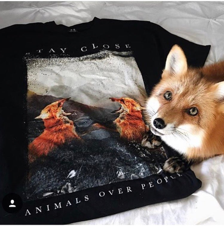 Image of AOP fox shirt