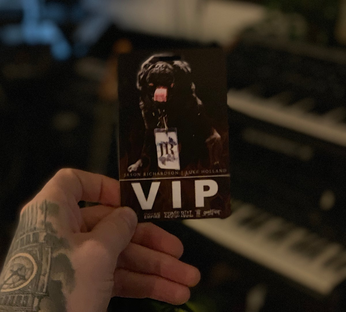Image of D00d the pug VIP Laminate