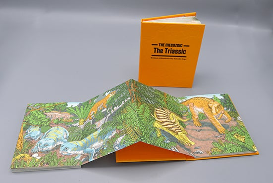 Image of The Triassic