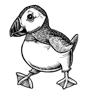 Image of Puffin T-shirt **FREE SHIPPING**
