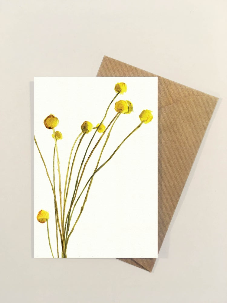 Image of 10 Florist cards