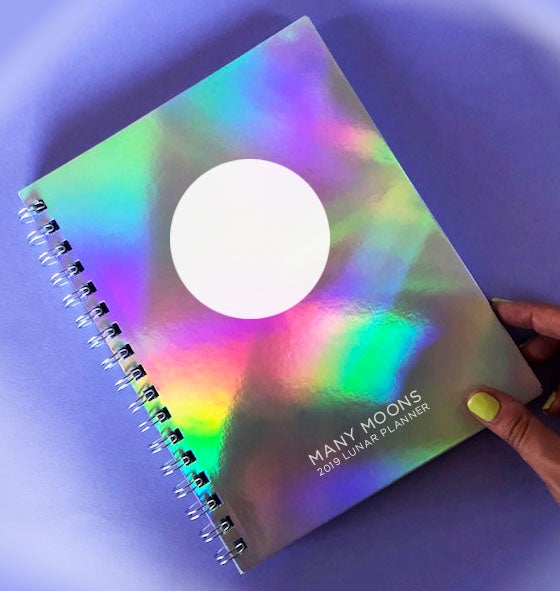 Image of *lightly damaged* MANY MOONS LUNAR PLANNER 2019
