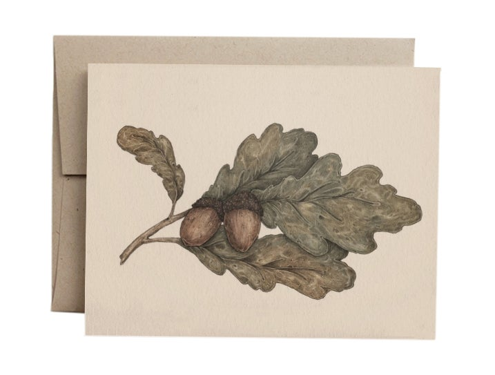 Image of Acorns Greeting Card