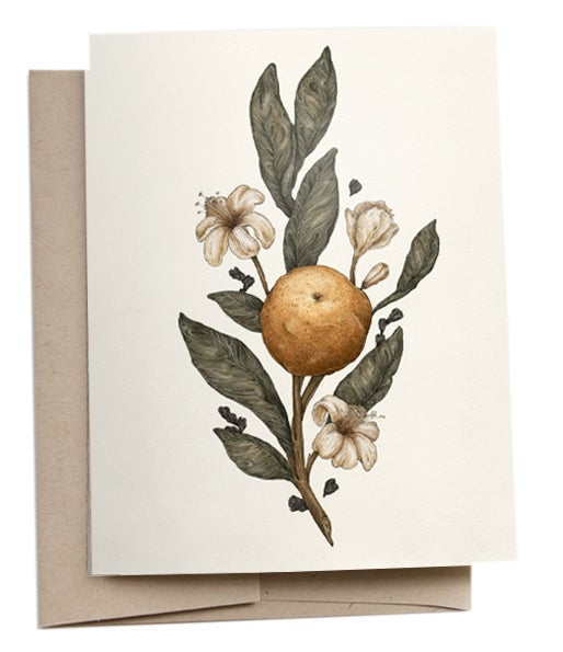 Image of Clementine Greeting Card