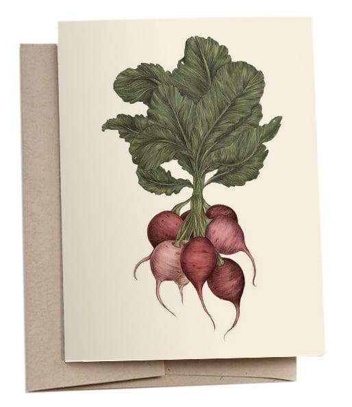 Image of Radishes Greeting Card