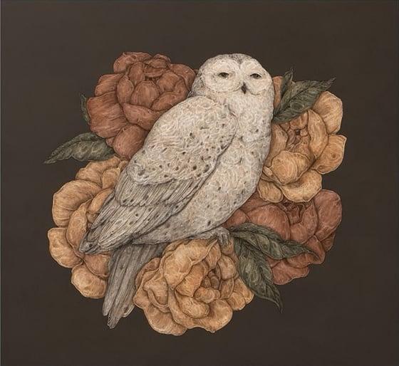Image of Snowy Owl Print