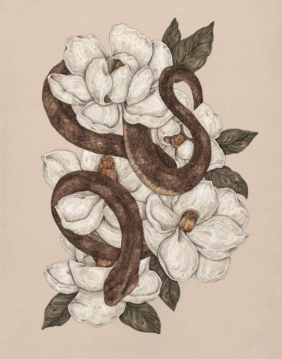 Image of Snake and Magnolias Print