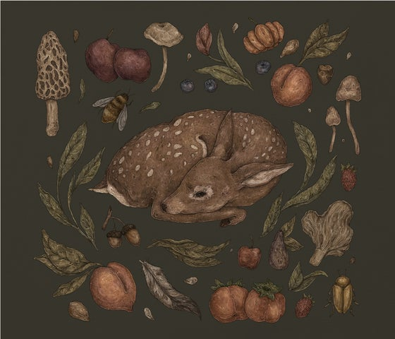 Image of Foraging Fawn Print