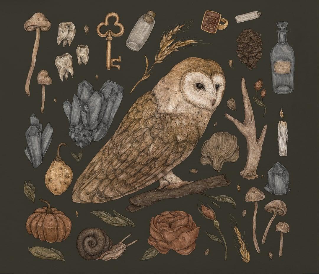 Image of Harvest Owl Print