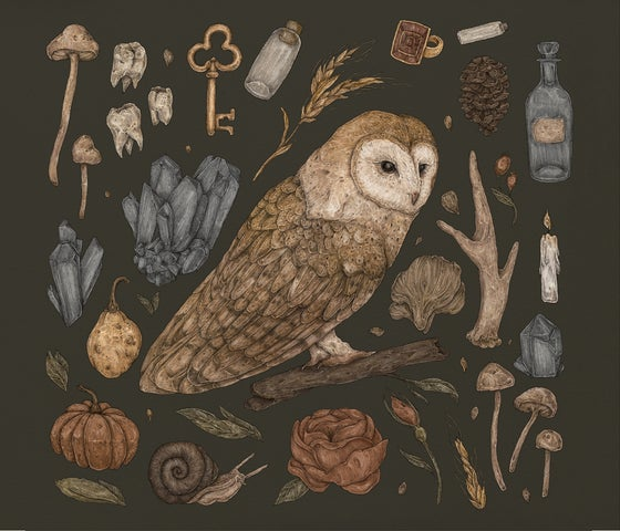 Image of Harvest Owl Print