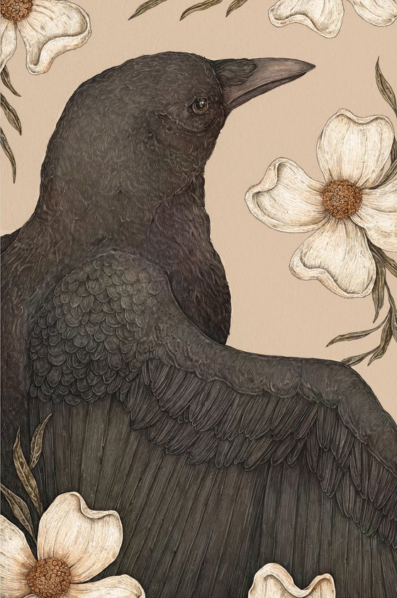 Image of The Crow and Dogwoods Print