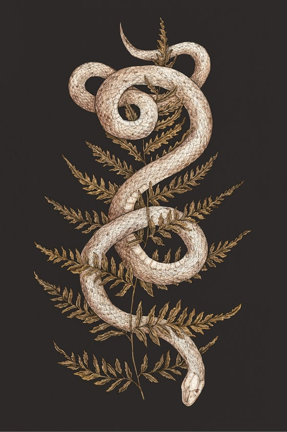 Image of The Snake and Fern Print