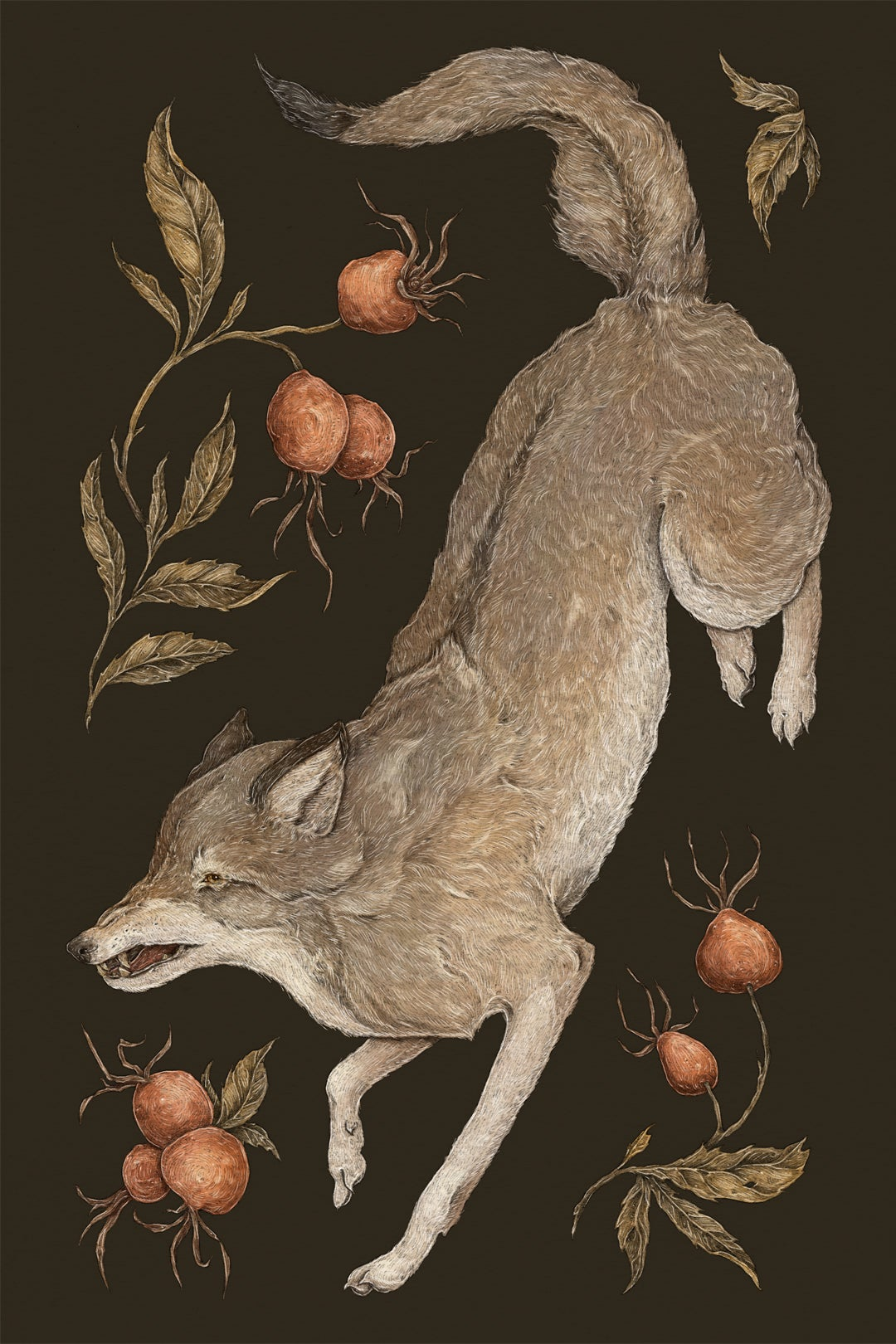 Image of The Wolf and Rose Hips Print