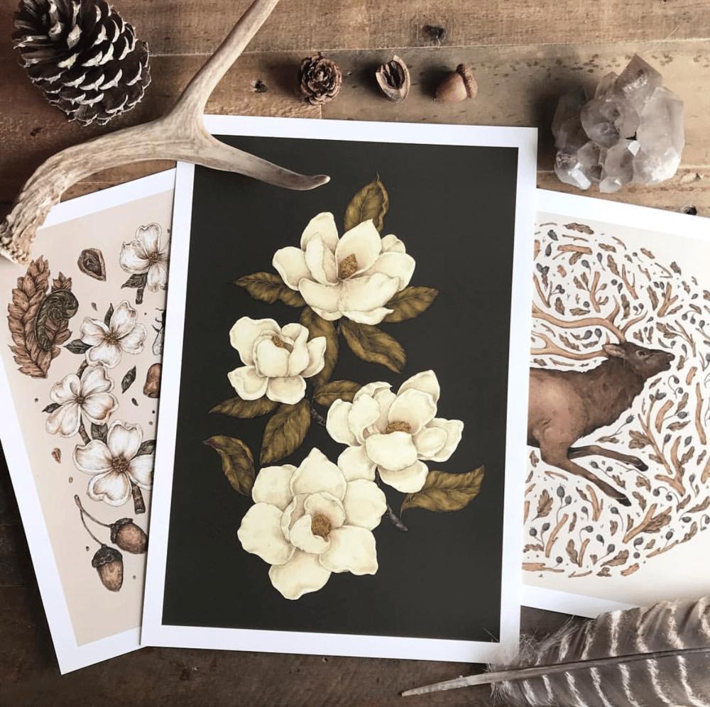 Image of Magnolias Print