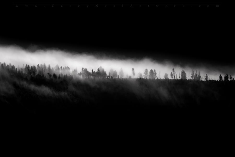 Image of The Fog