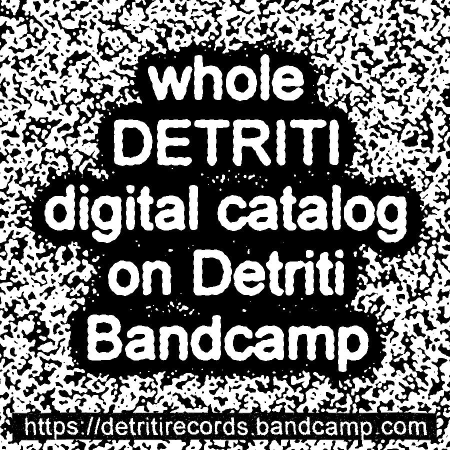 Image of Detriti digital catalog