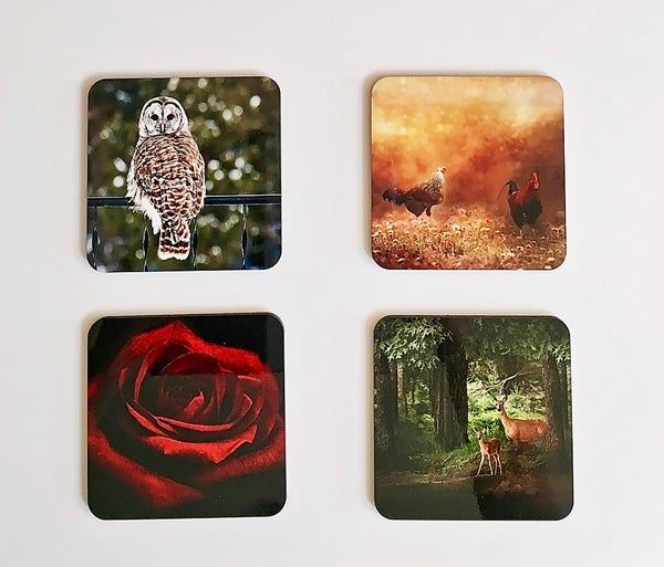 Image of Photography Coasters with Maple Stand, Red Rose, Wildlife, Rooster, Set of Four Coasters