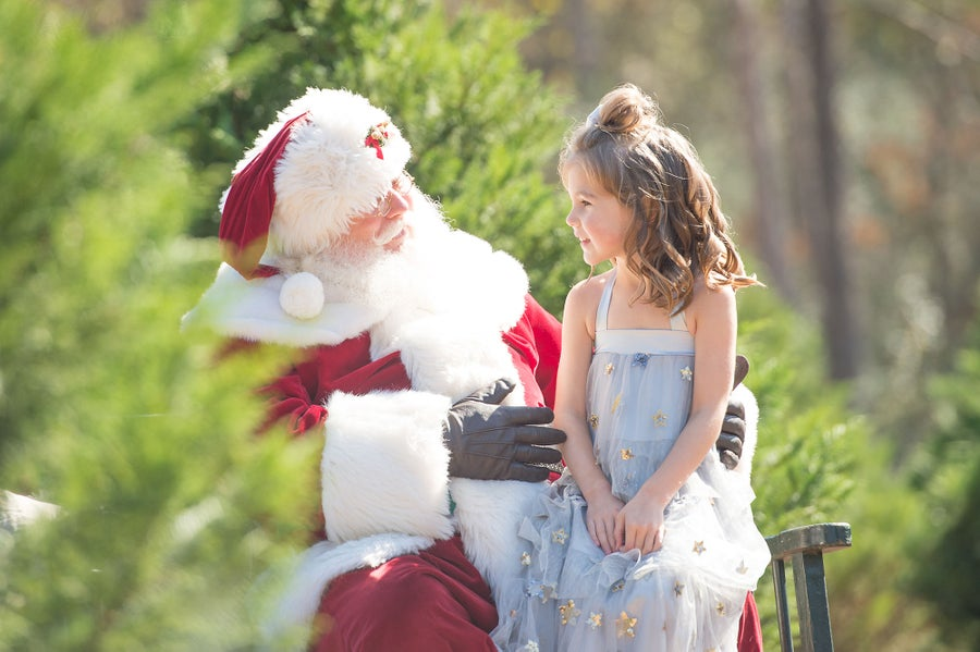 Image of Santa and/or Christmas Tree Mini-sessions - November 14th (COVID-Premitting)