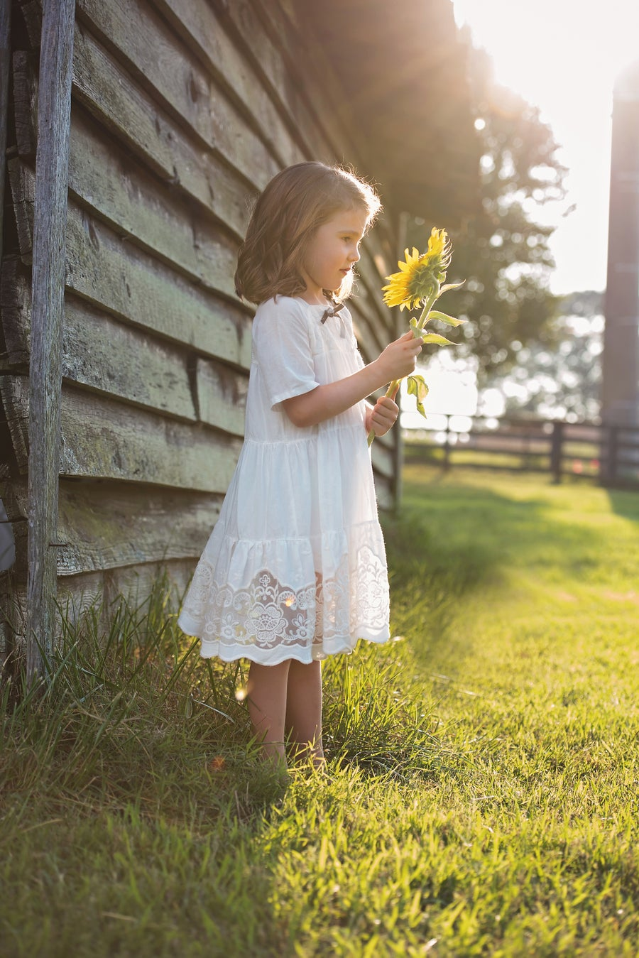 Image of Sunflower Mini-Sessions - July (Exact Date TBD)