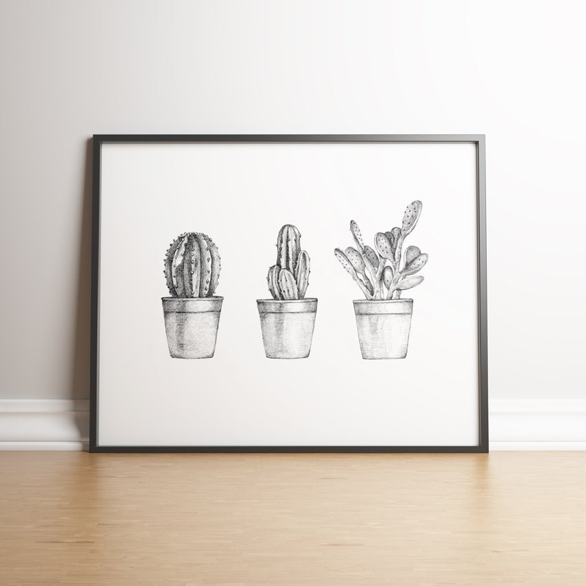 Image of Cactus Collection limited edition print