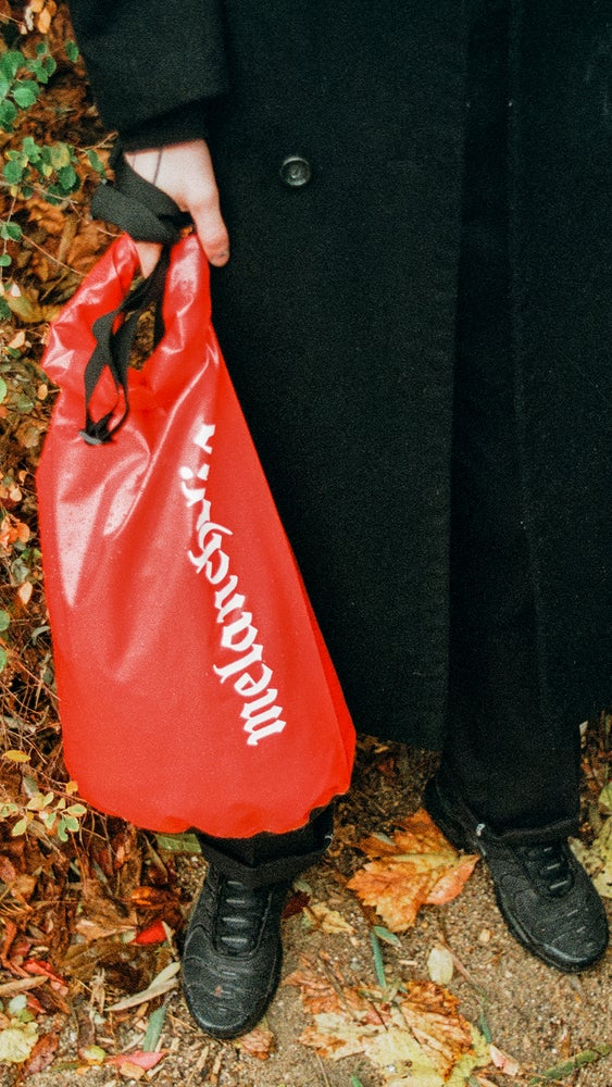 Image of SECURITY BAG