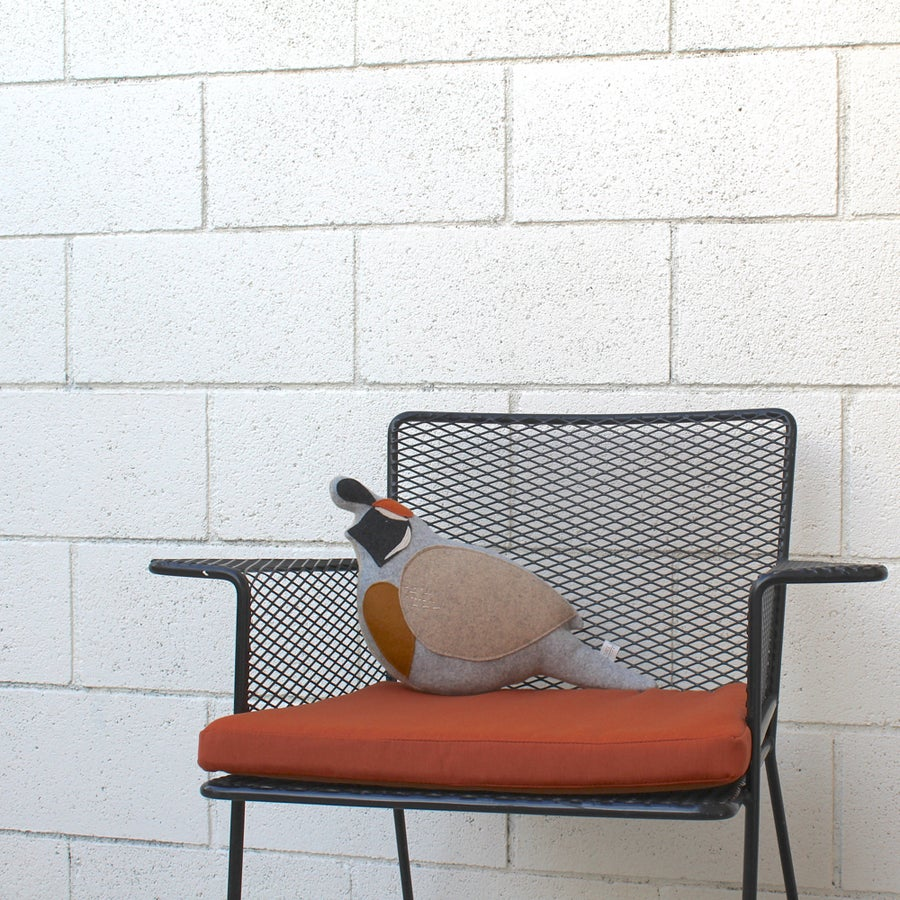 Image of the Quail