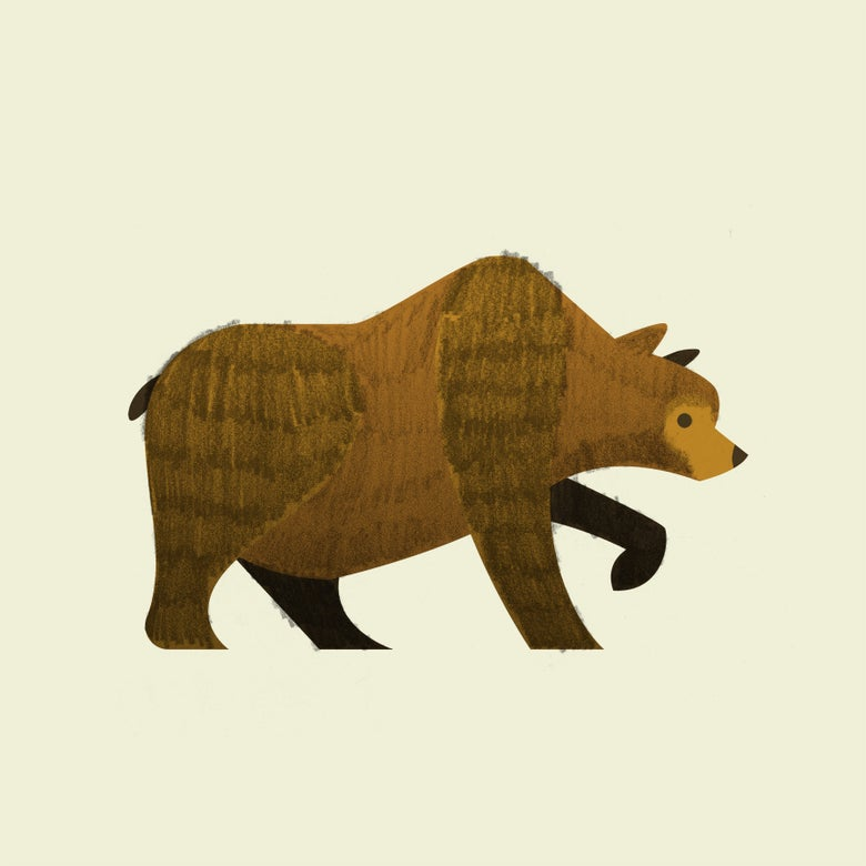 Image of Grizzly Print