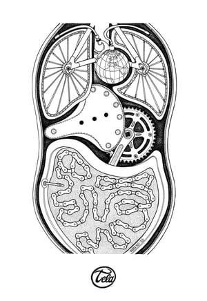 Image of Organismo Meccanico
