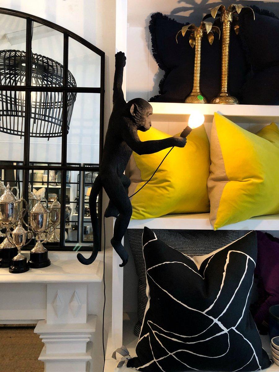 Image of Black Hanging Monkey