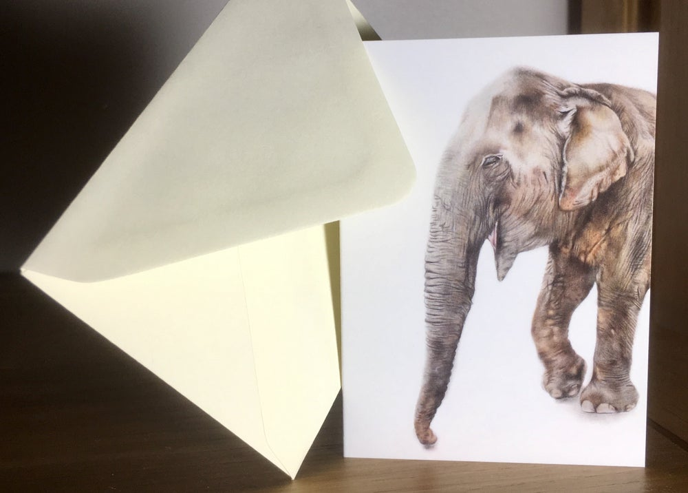 Image of Pi greeting cards
