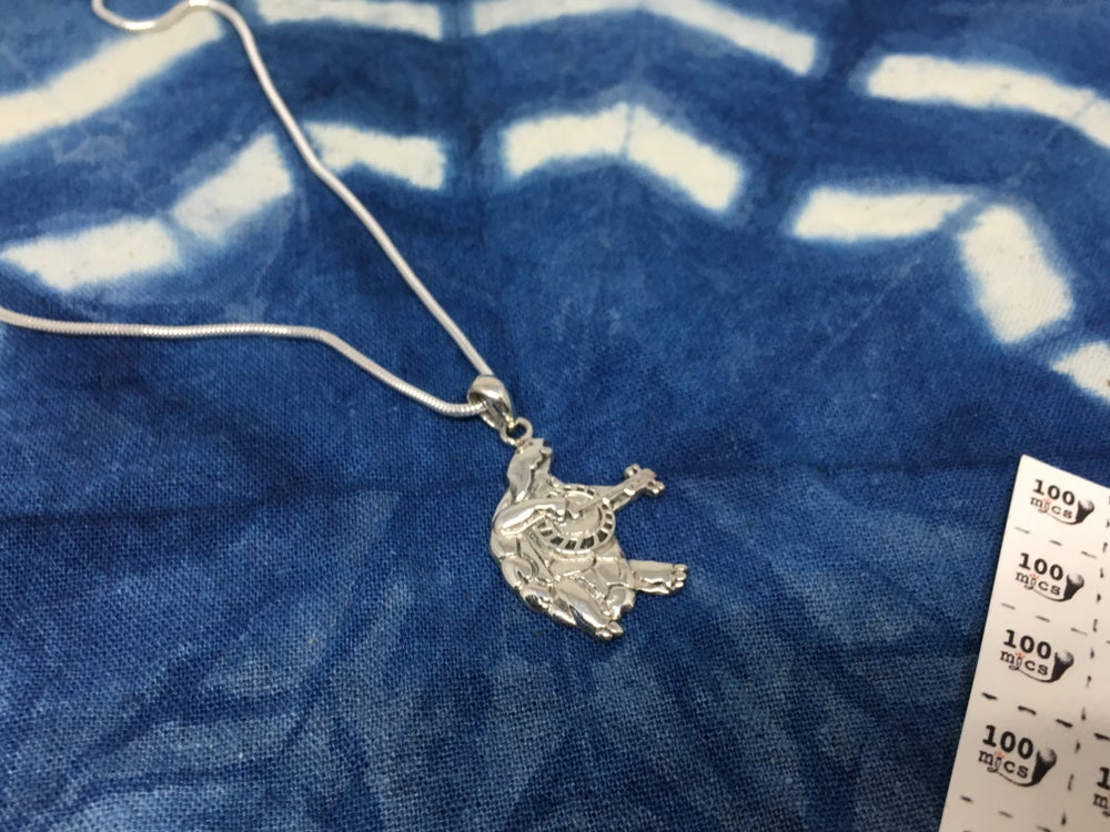 Image of Terrapin Pendant on Sterling Silver Chain