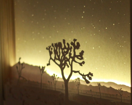 Image of Scene One - Joshua Tree (New Year's Day)