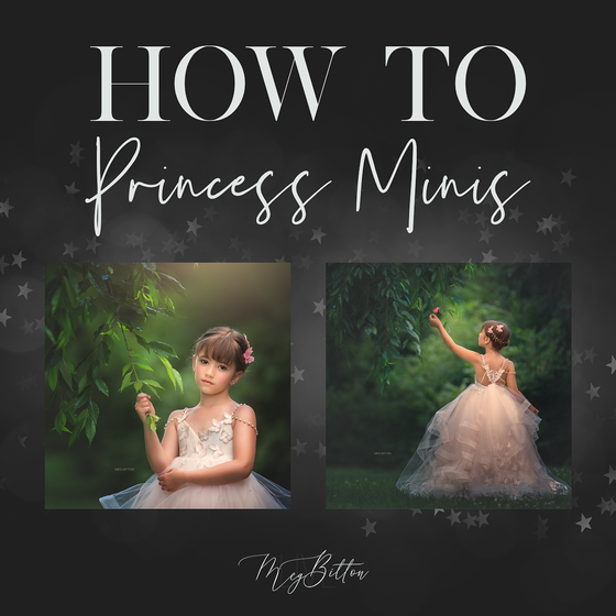 Image of How to. Princess Mini Sessions