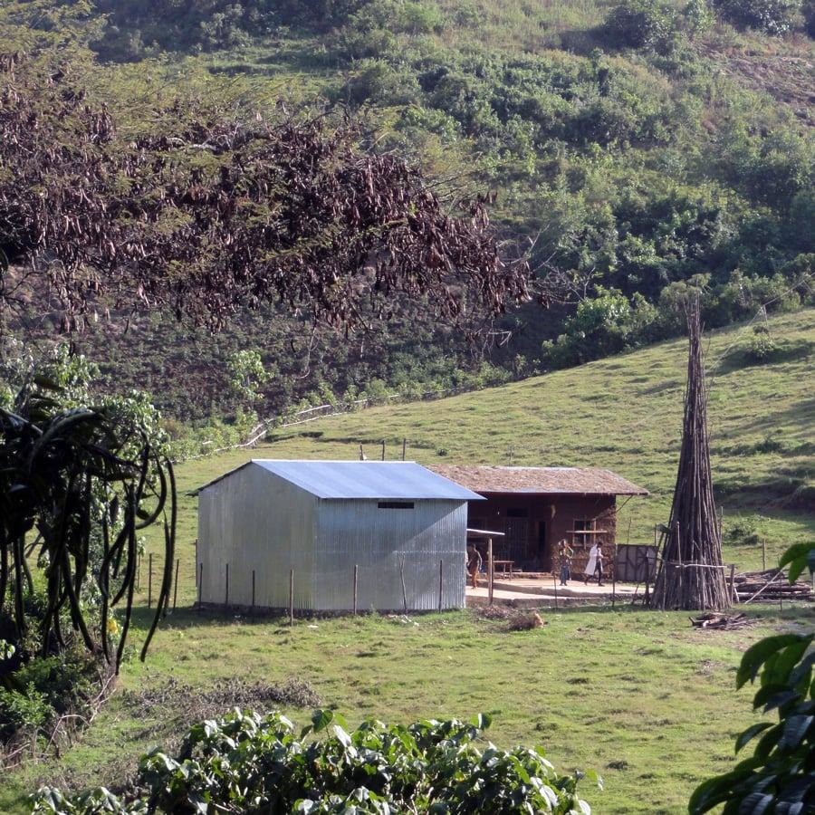 Image of Ethiopia Limmu Fahem Estate