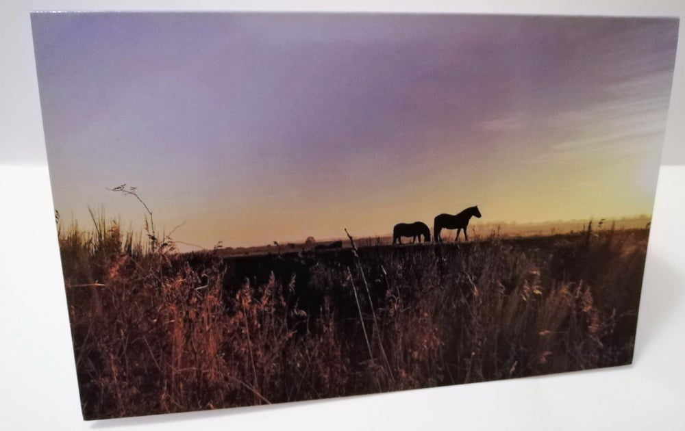 Image of Horses at sunset photograph card