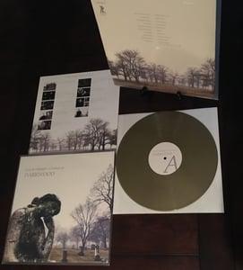 Image of Lied Der Kämpfer: A Tribute To Darkwood (gold vinyl, lim. 100)
