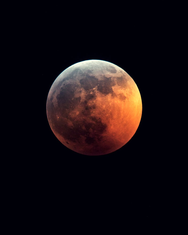 Image of Super Blood Wolf Moon